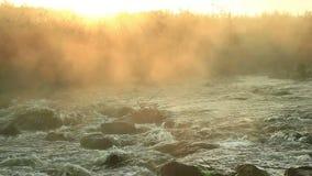 Alba sopra il fiume precipitante stock footage