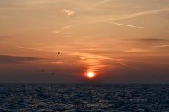 Alba sopra il lago Michigan Fotografia Stock Libera da Diritti