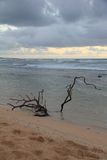 Alba sopra il Pacifico Fotografie Stock