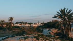Alba sopra la città e le palme arabe tradizionali di mattina stock footage