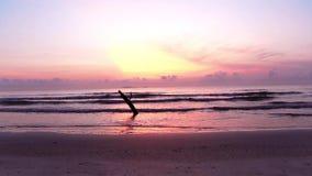 Alba sopra la spiaggia tropicale del litorale archivi video