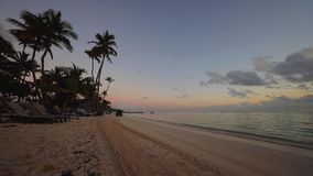 Alba sopra la spiaggia tropicale dell'isola in Punta Cana, Repubblica dominicana Trattore che pulisce il seand video d archivio