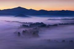 Alba sopra Misty Landscape Vista scenica del cielo nebbioso di mattina con il sol levante sopra Misty Forest immagine stock