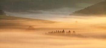 Alba sopra Misty Landscape Vista scenica del cielo nebbioso di mattina con il sol levante sopra Misty Forest Middle Summer Nature immagine stock libera da diritti