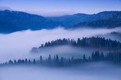 Alba sopra Misty Landscape Vista scenica del cielo nebbioso di mattina con il sol levante sopra Misty Forest Middle Summer Nature fotografie stock