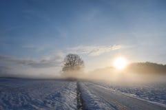 Alba sopra una strada campestre coperta in neve fotografia stock