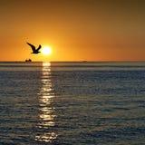Alba su Mar Nero Fotografia Stock Libera da Diritti