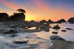 Alba su seashore-3 selvaggio Fotografia Stock Libera da Diritti