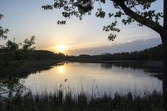 Alba su un lago con gli alberi come struttura Fotografia Stock