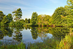 Alba su un lago - riflessioni Fotografia Stock Libera da Diritti