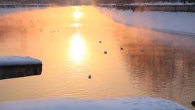 Alba sul fiume nell'inverno video d archivio