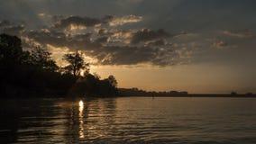 Alba sul lago, riva con gli alberi Immagine Stock