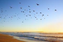 Alba sull'Oceano Atlantico Immagine Stock Libera da Diritti