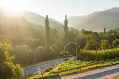 Alba sulla montagna bagnata, Serbia Fotografia Stock Libera da Diritti