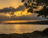 Alba sulla riva a distanza dell'oceano della Giamaica con l'albero in priorità alta Fotografia Stock