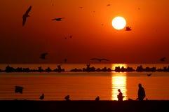 Alba sulla spiaggia Immagini Stock Libere da Diritti
