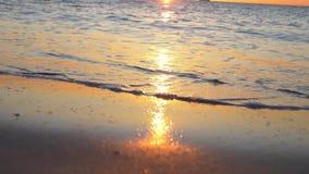 Alba sulla spiaggia stock footage
