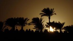 Alba sulla spiaggia intorno all'oceano ed alle palme Lasso di tempo archivi video