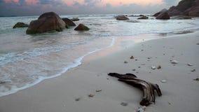 Alba sulla spiaggia nella baia di Koh Samui Immagine Stock