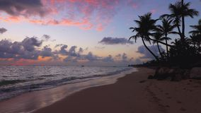 Alba sulla spiaggia tropicale dell'isola di paradiso e sul mare caraibico, Punta Cana archivi video