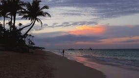 Alba sulla spiaggia tropicale dell'isola di paradiso e sul mare caraibico, Punta Cana video d archivio