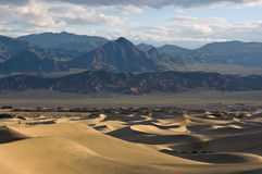Alba sulle dune di sabbia piane del Mesquite Immagini Stock Libere da Diritti
