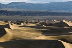 Alba sulle dune di sabbia piane del Mesquite Fotografia Stock Libera da Diritti