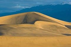 Alba sulle dune di sabbia piane del Mesquite Fotografia Stock