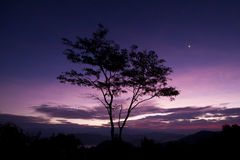 Alba @ Tak/Tailandia Fotografia Stock
