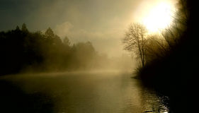 Alba tolta le erbacce da del fiume Fotografie Stock