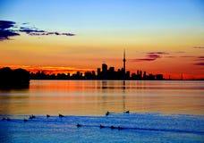 Alba a Toronto Fotografia Stock