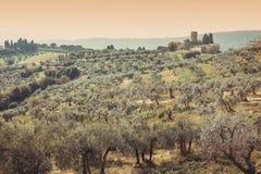Alba in Toscana Fotografia Stock Libera da Diritti