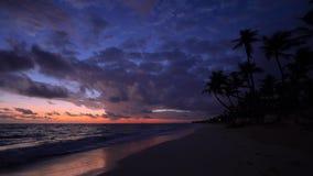 Alba tropicale con gli alberi del cocco e la spiaggia esotica dell'isola di paradiso archivi video