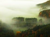 Alba in una bella montagna della Ceco-Sassonia Svizzera Fotografia Stock