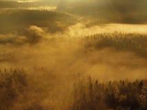 Alba in una bella montagna della Della Boemia-Sassonia Svizzera. I picchi e le colline dell'arenaria sono aumentato da fondo nebbi Fotografie Stock