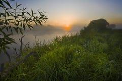 Alba in una nebbia sul fiume. Immagine Stock Libera da Diritti