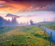 Alba variopinta di estate nelle montagne nebbiose Immagine Stock