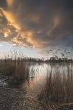 Alba variopinta sbalorditiva di inverno sopra le canne sul lago in Cotswolds Fotografie Stock