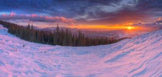 Alba variopinta stupefacente in montagne con le nuvole colorate ed il pi Fotografia Stock Libera da Diritti