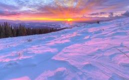 Alba variopinta stupefacente in montagne con le nuvole colorate ed il pi Fotografie Stock Libere da Diritti