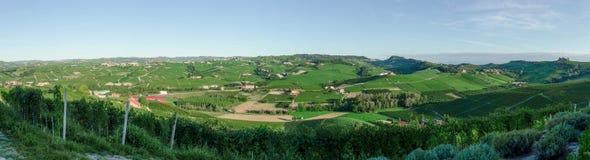 Alba, viñedos del Langhe Foto de archivo