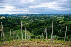 Alba, vignobles du Langhe Image libre de droits