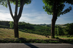 Alba, vineyards of the Langhe Royalty Free Stock Image