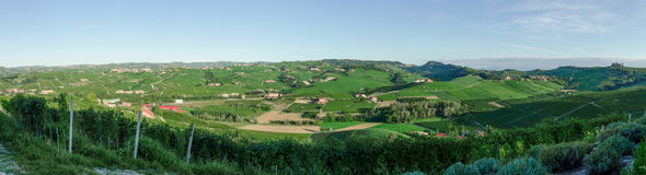 Alba, vineyards of the Langhe Stock Photo