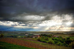 Alba, vineyards of the Langhe royalty free stock photography