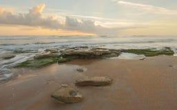 Alba a Washington Oaks State Park, Florida immagini stock