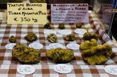 Alba white truffle with prices. Market stall with white fruffle (Tuber Magnatum Pico) and prices at the 'Fiera del Tartufo' (truffle fair) of Alba, in Piedmont ( stock photos