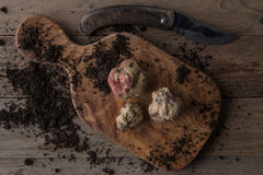 Alba white truffle. Top view alba white truffle on wood board and truffle'sknife Stock Photo