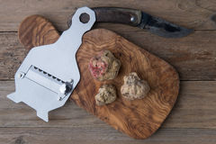 Alba white truffle. Top view alba white truffle on wood board and truffle'sknife stock photos