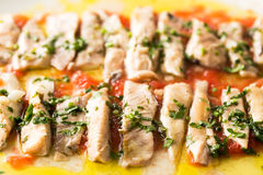 Albacore fillet Stock Photography